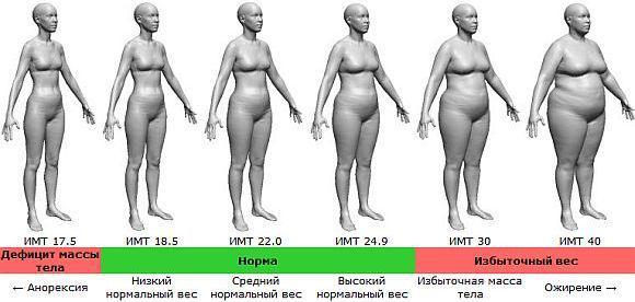 Ожирение по абдоминальному типу